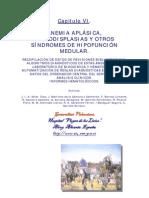 Anemia Aplasica, Mdp