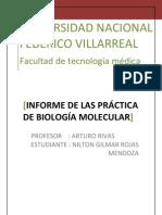 INFORME DE BIOLOGGIA PRÁCTICA 6 Y 7