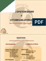 Citomegalovirus y Epstein Barr 1198640695225578 3