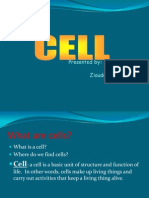 Cells Power Point Presentation 1223919167512493 9