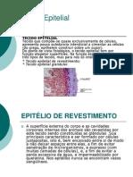 Cópia de Tecidos Epitelial