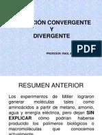 Evol Convergente y Divergente