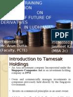 Future of Derivatives in Ludhiana