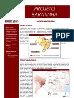 Baratinha_BEMISA