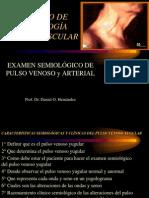 IV Curso de Semiologia 2012