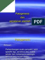 Pa to Genesis Dan Perjalanann Alamiah Hiv