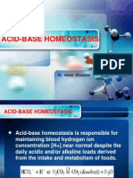Acid Base Homeostasis