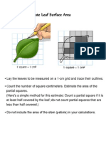 How to Calculate Leaf Surface Area