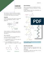 4 BIOQUIMICA ácidos nucléicos