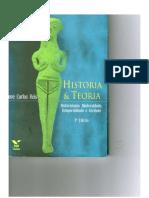 1. História e Teoria