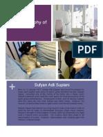 Biography Homework - Sufyan Adli Supiani