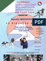 Affiche stage Kyoshi Mochizuki Carmaux 2012