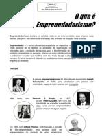 Texto 2 - O que é Empreendedorismo