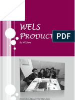 WELS Production - Final Idea