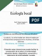 ecosistema bucal