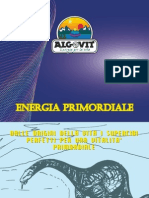 Energia Primordiale