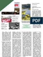 Carta Abierta Al Presidente Ollanta Humala - Folleto