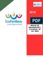 Manual de Organizacion y Funciones de Las RIISS