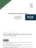 Demografia Dos Povos Indigenas No Brasil