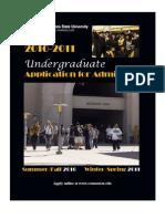 Undergrad App 2010-11