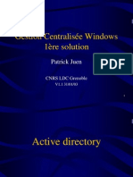 SARI Windows Active Directory