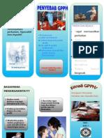 4. Leaflet Adhd