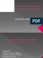 Analisis Factorial Causal - Austral Group