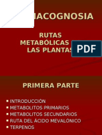 14157870 Rutas Metabolic As en Plantas
