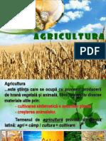 agricultura (3)
