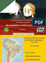 Mejoramiento Genetico Cuyes www.peru-cuy.com
