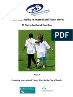 12 Steps 2 Good Intercultural Practice Phase2