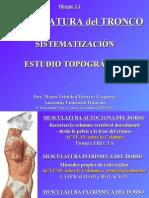 2 1 Torax-Abdomen y Paredes Musculares