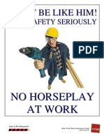 3_5_6_4 Horseplay at Work Edited Final PDF