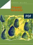 13692546 Organic Avocado