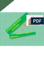 Integrementary System 2