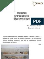Impactos_antrópicos_na_biodiversidade 2 etapa