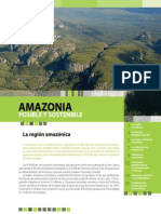 Folleto Amazonia Posible y Sostenible