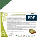 Certificate d2w Spanish