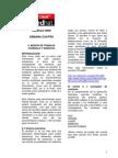 Modos de Trabajo - Consola y Grafico