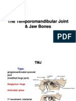 21-TMJ Jaw Bones E-learning