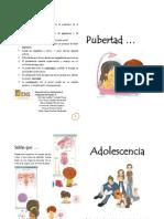 Diptico Pubertad