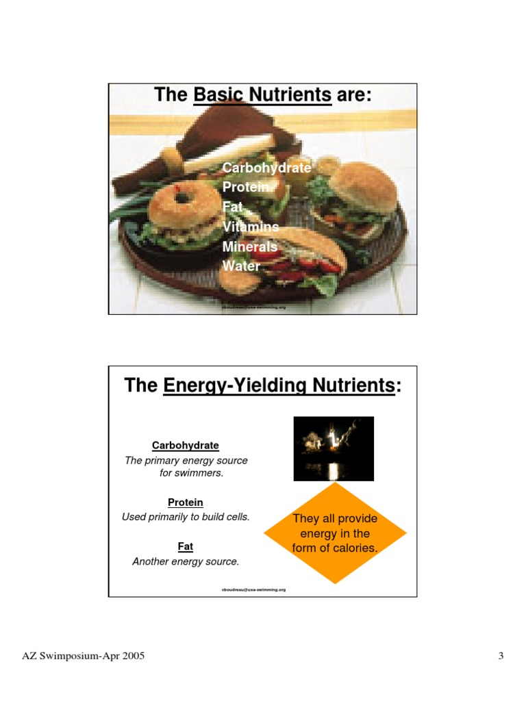 Sports Nutrition Glycemic Index Carbohydrates