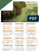 Calendari 2009