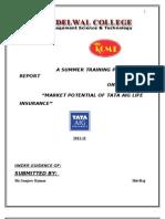 A Summer Training Project Report on Tata Aig 2010-11 Muzaffarnagar