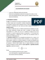 Lab Oratorio Numero 5 Calor Especifico en Solidos