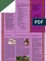 NAMHHR Brochure