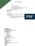Proiect Didactic Mixta Modificat