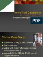 Amino Acid Catabolism 2