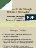 Fund Amen To Da Biologia Celular e Molecular
