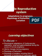 Physiology of Parturition & Lactation 5042012